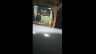 Video de um Casal transando na roda gigante foram flagrados por um cara que estava passeando com a fámilia e viu essa putaria sem limites em local público.