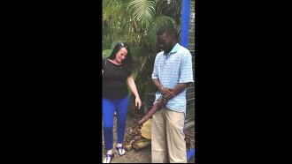 Video das Gringas espantadas com tamanho do pau do negro africano que deixou elas pegarem no seu pau gigante e ainda filmar a putaria para internet.